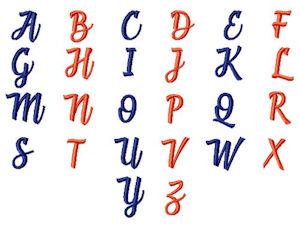 Alphabet included with In the hoop zipped Glass Case